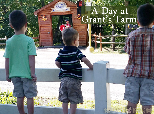 A Day at Gran'ts Farm in St. Louis, MO