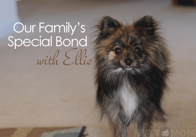 Our Family's Special Bond with Ellie