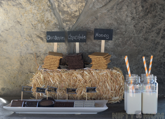 S'mores Party Setup