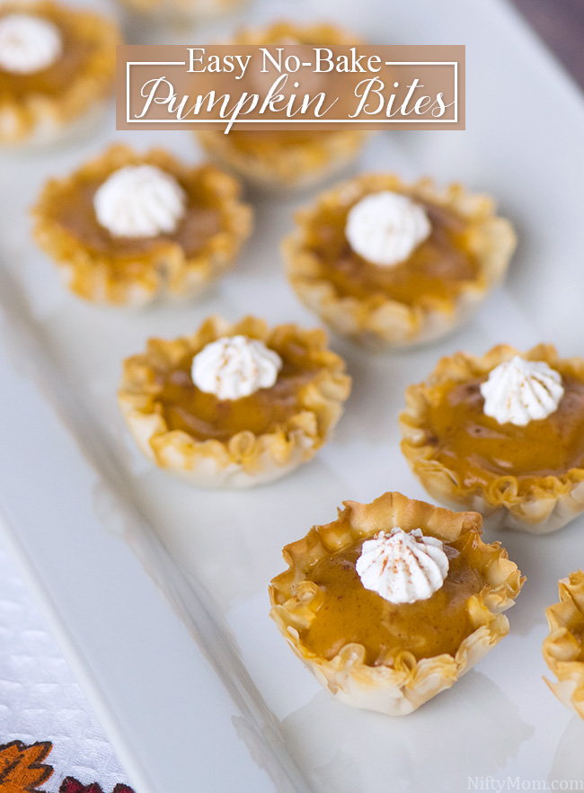 Easy No Bake Pumpkin Bites Recipes