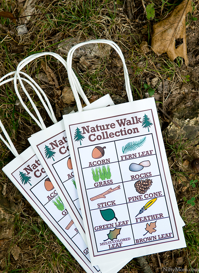 Free Printable Nature Walk Collection Sheets