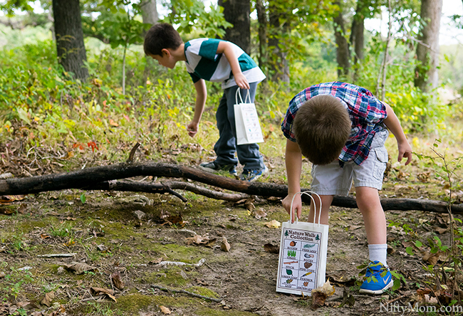 Nature Walk Collections + Printable Activity Sheet