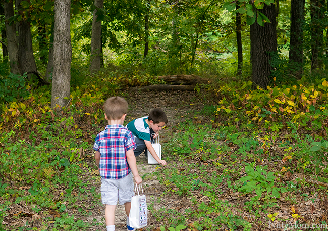 Fall Traditions with Kids - Nature Walk Collections + Printable Activity Sheet