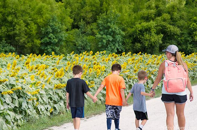 mom-boys-walking