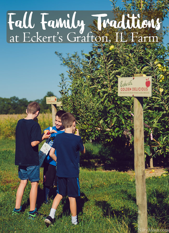 Fall Traditions ~ Apple & Pumpkin Picking at Eckert's Grafton Farm
