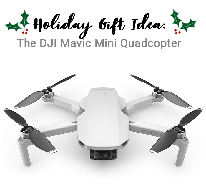 The DJI Mavic Mini Quadcopter Camera Drone